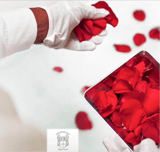 butler rose petals