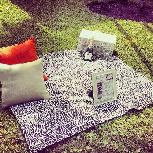 picnic srb