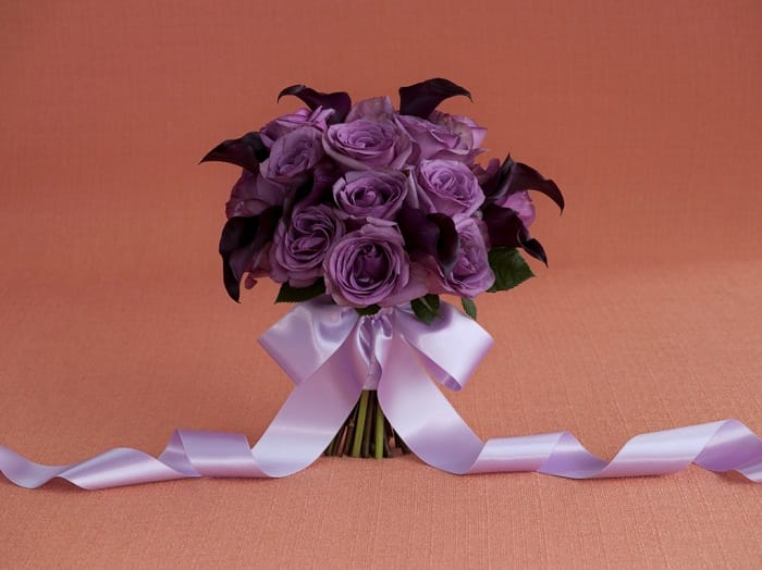 11046_53_18Roses8MCL_Purple_DarkRed_497-2