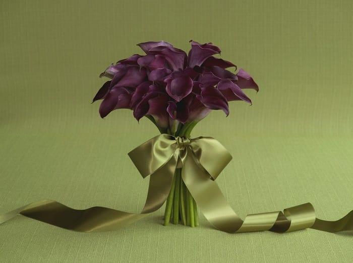 11046_69_20MCL_Purple_273