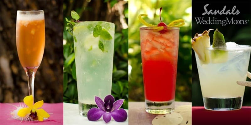 new signature cocktails